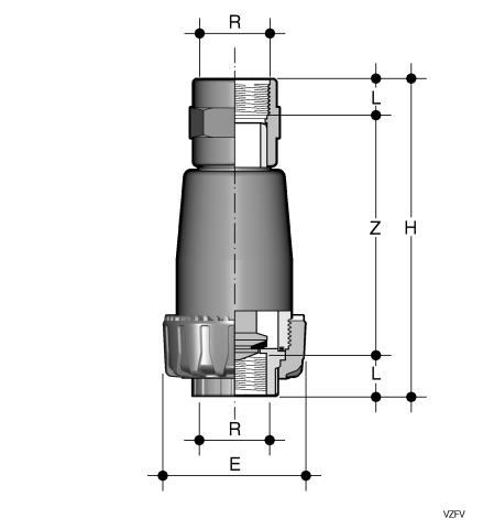 Foot valve with BSP threaded female ends Dimensioned drawing 2D