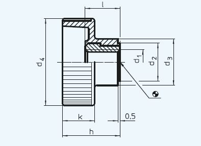 EH 24820.0004 Knurled Nuts, plastic Parameter drawing 2D