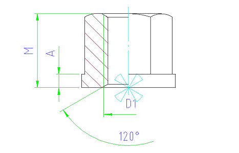 EH 23080.0008 Collar Nuts Parameter drawing 2D