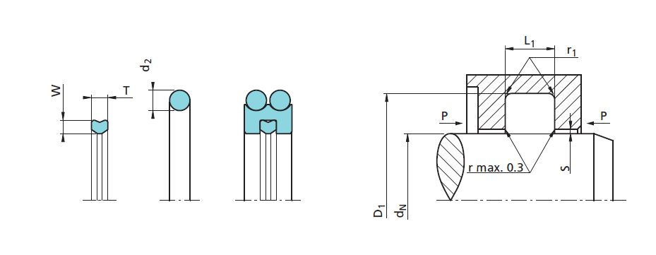 Rod Seals Diagram 2D